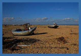 dungeness beach 53