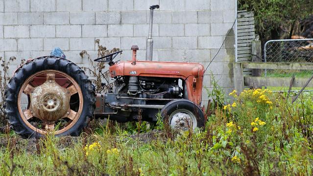 1964 Massey Ferguson 135 : Massey ferguson tractor flickr photo sharing