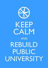 Keep Calm and Rebuild Public University