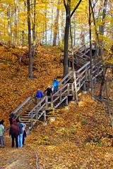 Walking Trail and Wooden Stairway along Spencer Gorge