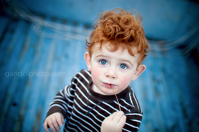 Little Boy With Red Hair And Blue Eyes Little Boy Red And Blue