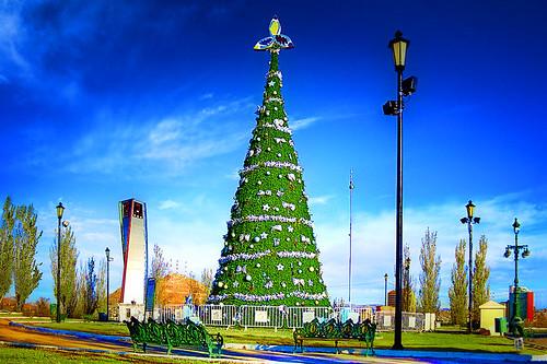 christmas parque chihuahua arbol navidad hdr