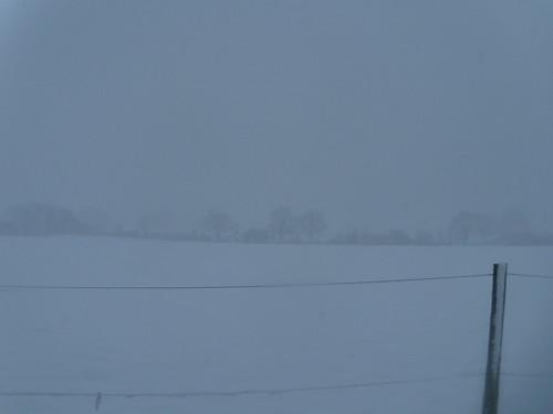 DSCN8513 Snow