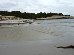 Sur le sentier de Sperone : le ruisseau de Sperone et sa plage du Petit Sperone
