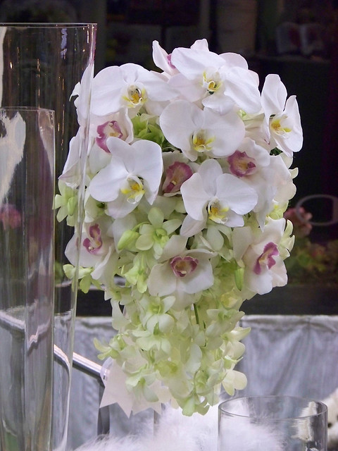 Wedding Flower Arrangements Orchid : Orchid wedding floral arrangements flickr photo sharing