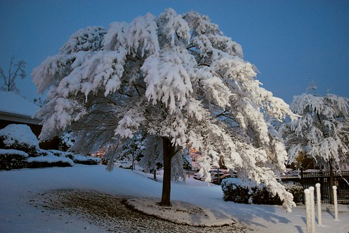 usa snow america ga georgia us unitedstates augusta vicsf49 snowmageddon