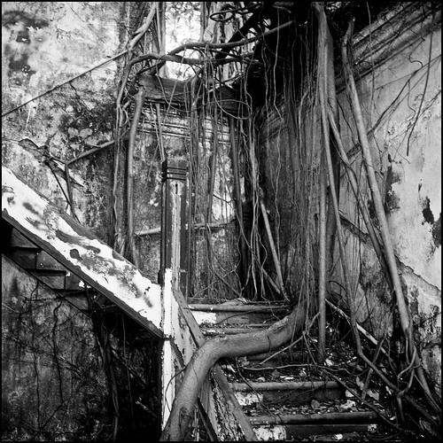 Abandoned House #2