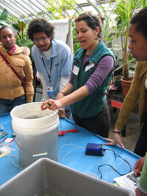 Karla Osorio-Perez leads workshop on brewing compost tea at Making Brooklyn Bloom 2010.