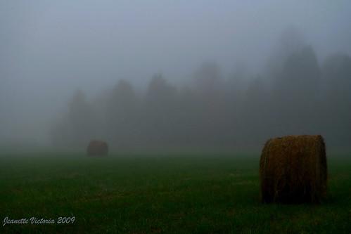 mist fog northcarolina haystacks hay haybale lexingtonnc leicadlux4 jeanettevictoria