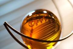 jewellery(0.0), drink(0.0), lighting(0.0), alcoholic beverage(0.0), amber(1.0), yellow(1.0), amber(1.0), macro photography(1.0), glass(1.0),