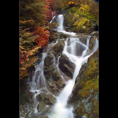 usa nature water waterfall washington moss outdoor wa potofgold cascadenationalforest