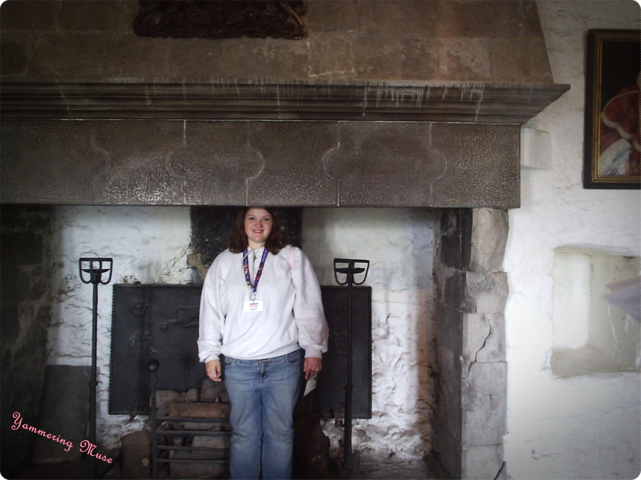 Bunratty Fireplace