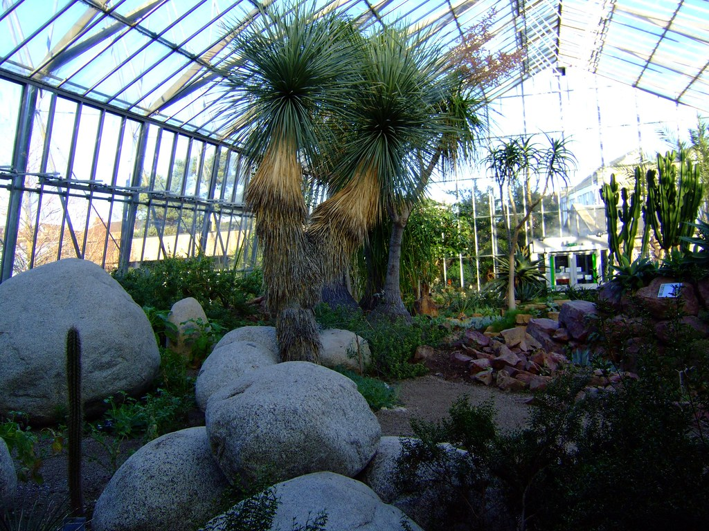 Royal Botanic Gardens Edinburgh 28