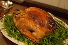 turkey(0.0), fried food(0.0), bird(0.0), meal(1.0), turkey meat(1.0), roasting(1.0), thanksgiving dinner(1.0), hendl(1.0), food(1.0), dish(1.0), roast goose(1.0), cuisine(1.0), turducken(1.0),