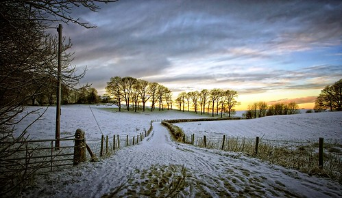 trees winter snow landscape dusk lancashire lancaster agriculture footpath ♥ aldcliffe sameviewdifferentday flickrduel ♫♫♫ seenitbefore onadogwalk formytreehuggingfriend