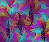 Blooming (Morphing)
