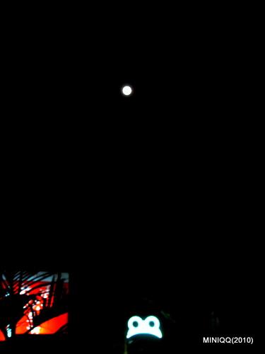 光陰地圖000_228的滿月與蛙咖啡(20100228)