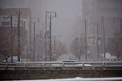 Photograph: Springtime in Denver