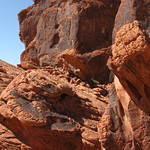 Valley of Fire 031