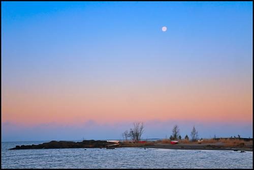 trees sea sky moon grass boats glow beltofvenus