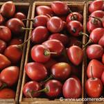 Tree Tomatoes - Saquisili, Ecuador