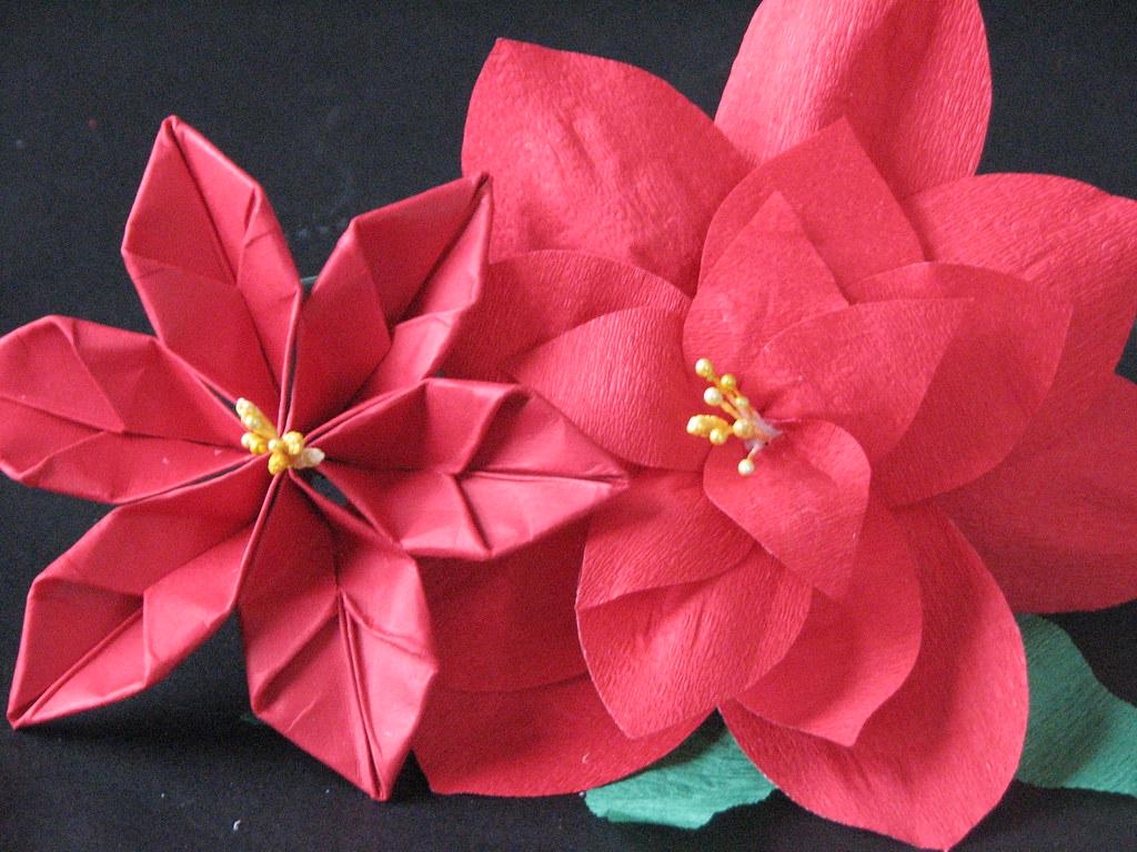 13 Origami Poinsettia 015 Ronijj Flickr