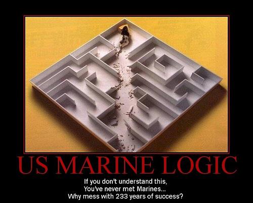 marine logic