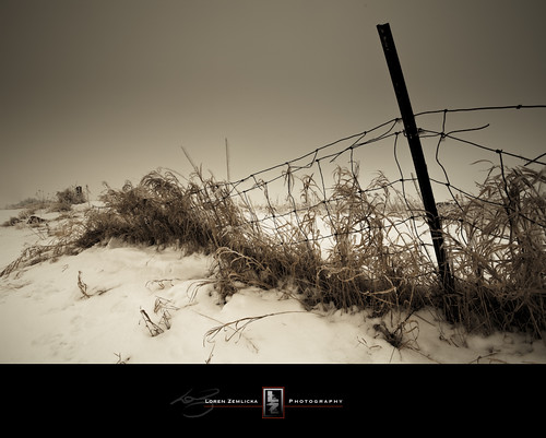 winter snow grass wisconsin rural fence landscape photography photo midwest post image country january picture explore madison canonef1740mmf4lusm 2010 canoneos5d flickrexplore lakefarmpark flickrfrontpage lorenzemlicka