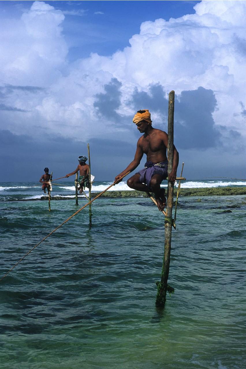 Stilt fishermen southern coast sri lanka a photo on for Sri lanka fishing