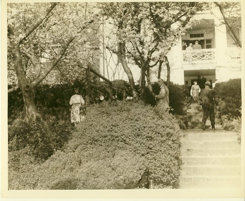 Manse Gardens