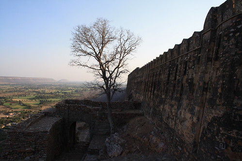 india tree fort aerial rajasthan chittorgarh