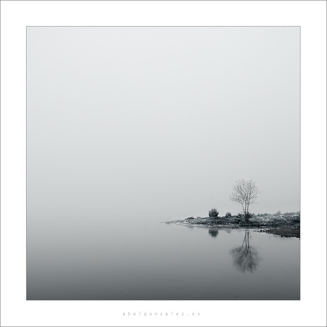 Niebla y poco mas