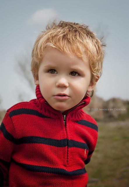 Little Model Attitude
