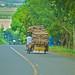 Small photo of Filipino Transportation
