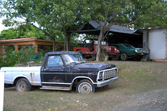 automobile, automotive exterior, pickup truck, vehicle, truck, ford f-series, ford, antique car, land vehicle, motor vehicle,