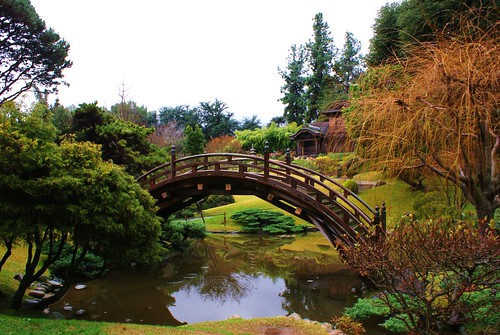 Japanese Gardens, Huntington Gardens, Los Angeles by lawrence's lenses