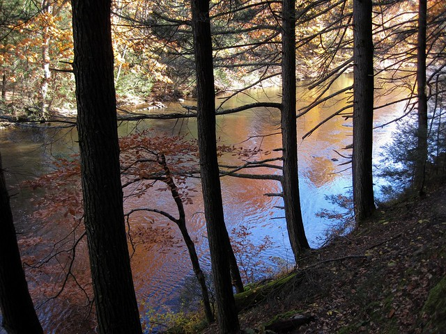 Fall on the Shepaug River