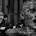 Yell  365/09/99 by *~MacBern~* aka Argyll Images