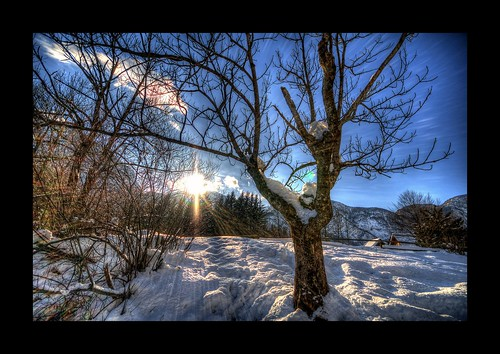 road park trip travel winter sky cloud sun lake snow alps tree tourism nature water beautiful clouds amazing nice julian nikon perfect tour view superb path unique awesome sigma grand tourist slovenia national journey stunning excellent slovenija lovely incredible 1020 hdr breathtaking bohinj alpe triglav d300 photomatix narodni julijske triglavski slod300