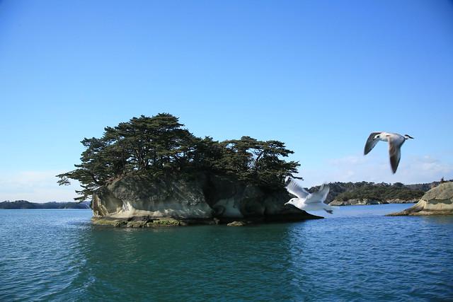 20090126_Matsushima_4041