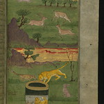 Illuminated Manuscript, Collection of poems (masnavi), A lion and a fox admire their reflection in the water of a well while a rabbit looks on, Walters Art Museum Ms. W.626, fol. 20b