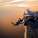 Skydiving 2009, 7 way sunset load over the Florabama by divemasterking2000