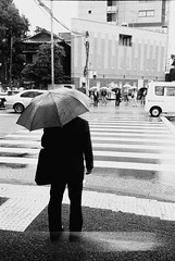 white(1.0), snapshot(1.0), rain(1.0), road(1.0), photograph(1.0), monochrome photography(1.0), lane(1.0), monochrome(1.0), black-and-white(1.0), street(1.0), black(1.0), pedestrian(1.0), infrastructure(1.0), pedestrian crossing(1.0), zebra crossing(1.0),