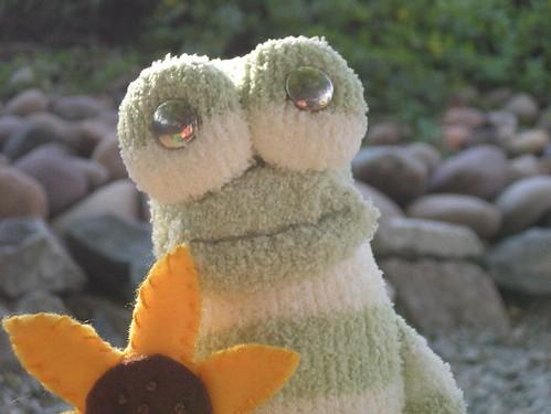 Sonny the Sock Frog
