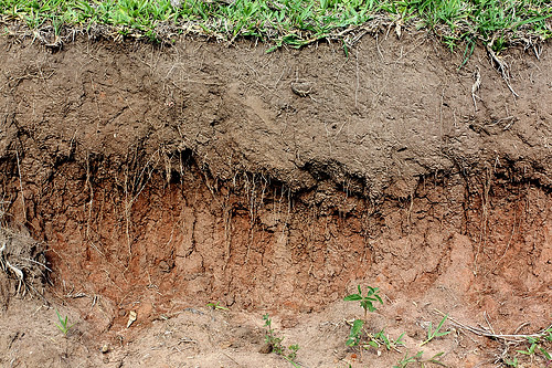Layers of soil flickr photo sharing for Garden soil definition