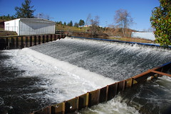 Chambers Creek Dam