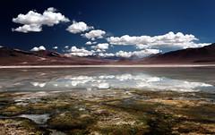 Altiplano: lagoon reflections