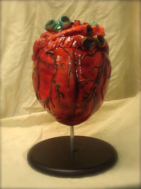 anatomical heart cake