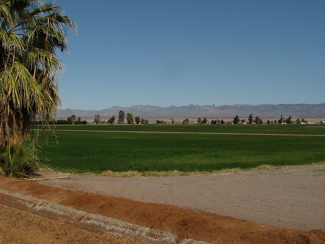 Fort Mohave Homes For Rent