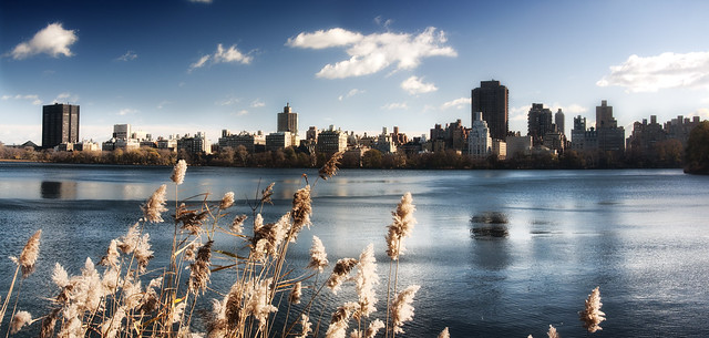 Upper Lake in New York Central Park